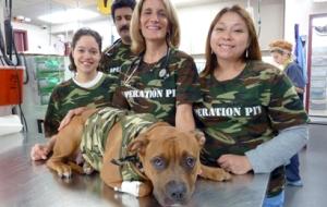 ASPCA Volunteers