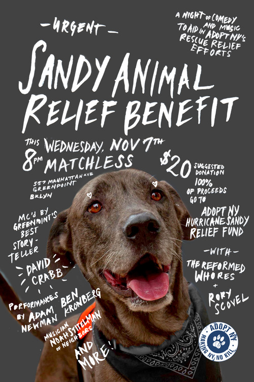 Sandy Animal Relief